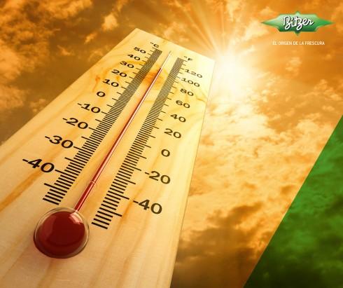 calentamiento compresor de refrigeración